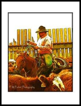 P.M. Packet Photography western photo art card